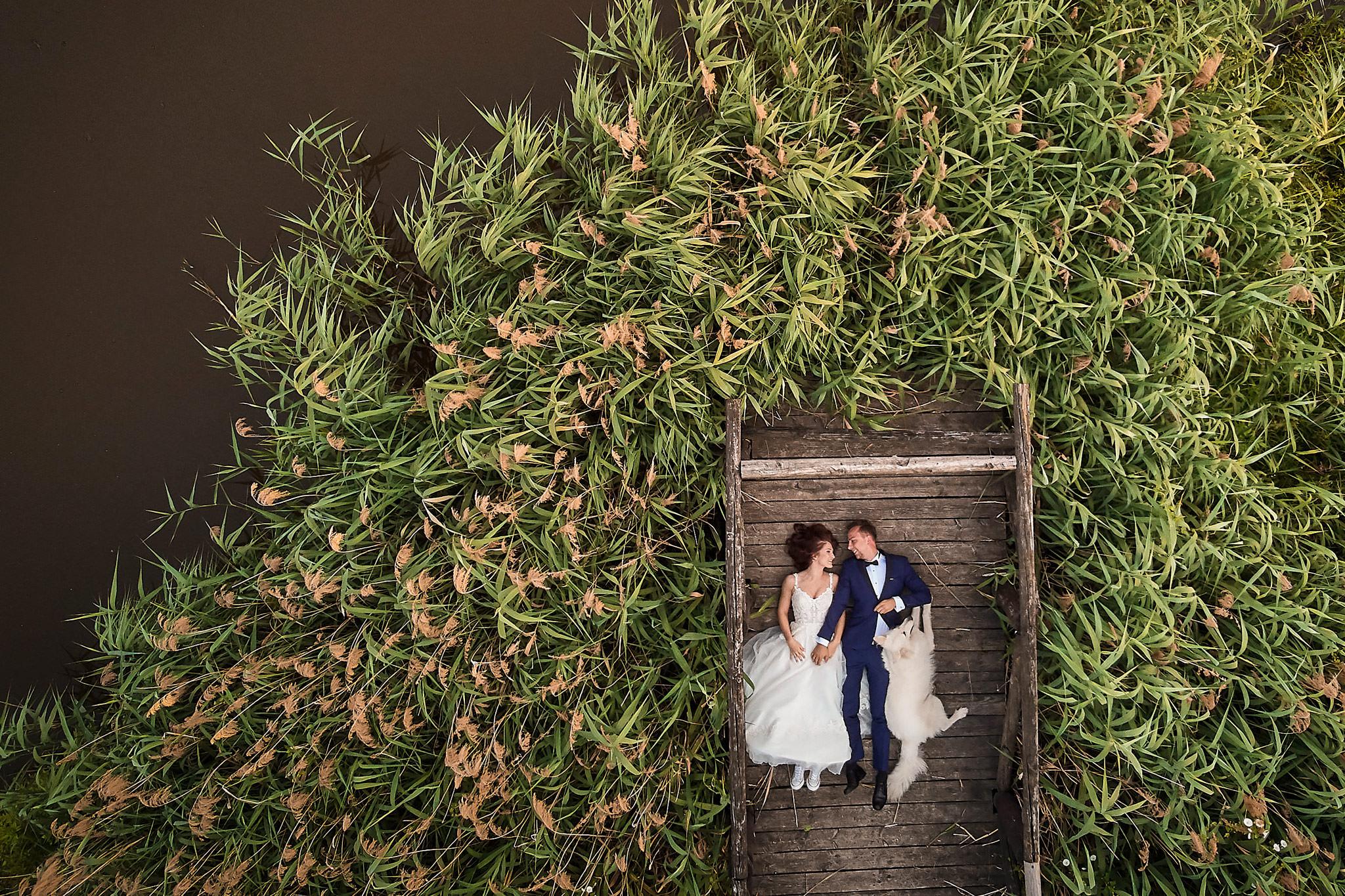 014 dron na wesele cena